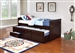 Rochford Trundle Daybed in Cappuccino Finish by Coaster - 300106