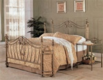 Decorative Queen Size Iron Bed in Antique Brush Gold Finish by Coaster - 300171Q
