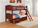 Parker Twin Twin Bunk Bed in Brown Cherry Finish by Coaster - 460213