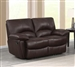 Clifford Double Reclining Love Seat in Brown Leather by Coaster - 600282