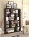 Rounded Rectangle Bookcase in Cappuccino Finish by Coaster - 800293