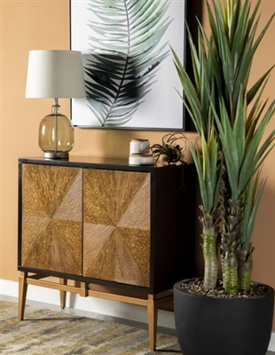 36 Inch Accent Cabinet in Brown and Antique Gold Finish by Coaster - 953496