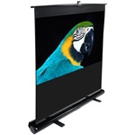 "Portable Floor Standing Projector Screen 49 x 87 (100"" Diagonal)"